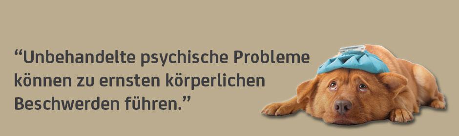 psychosomatische_medizin.jpg